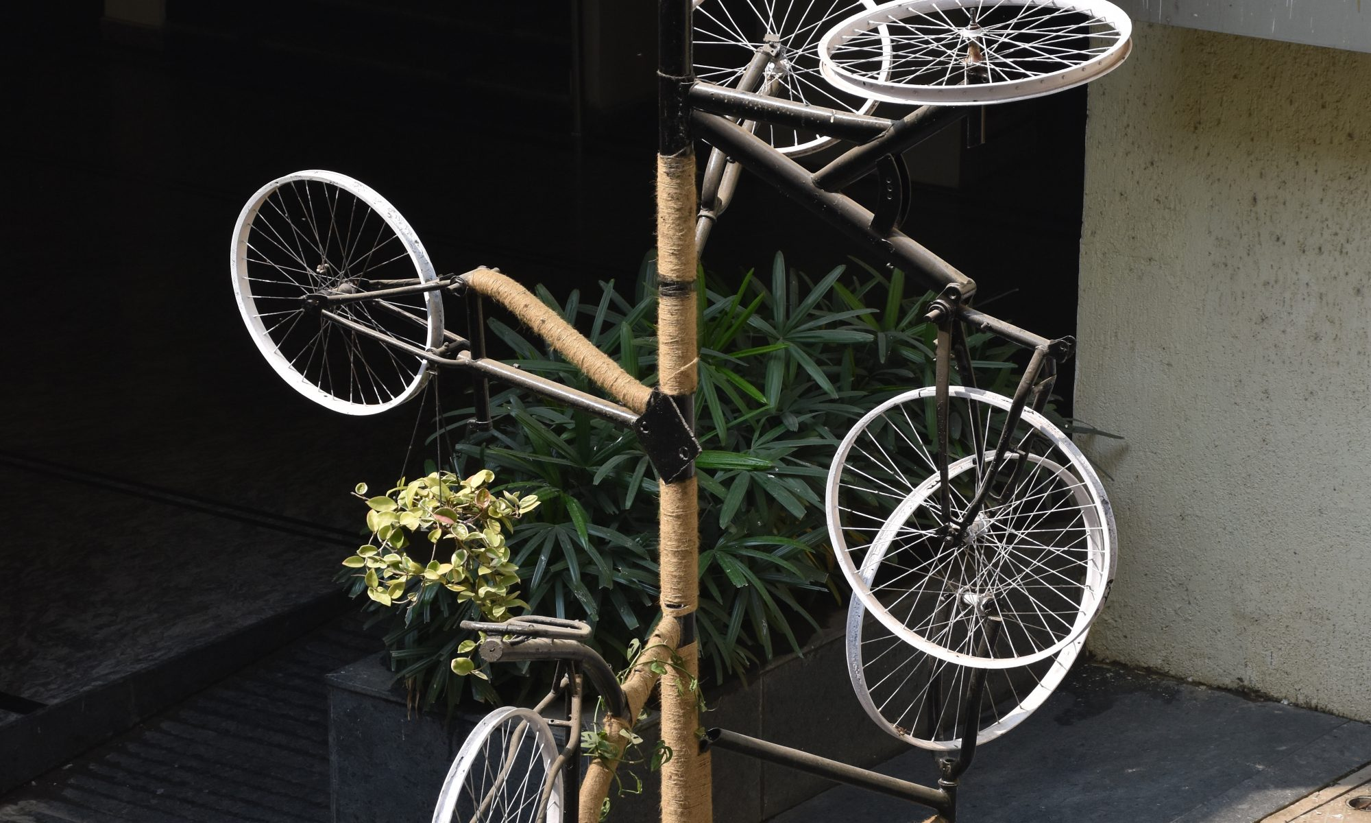 INSTALLATION-CYCLE TREE-2017-18